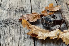 Fall leaf and watch. Seasoning Daylight savings time concept Stock Image
