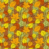Fall leafage seamless background. Vector pattern for continuous replicate Royalty Free Stock Image
