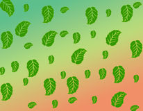 Fall leafs. Fall green leafs in color background Royalty Free Stock Photo
