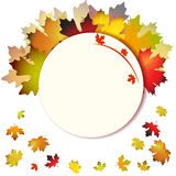 Fall leafs abstract background Royalty Free Stock Image