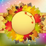 Fall leafs abstract background Stock Photos