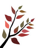 Fall Leaves. On a stem (vector Stock Images