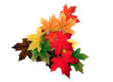 Free Fall Leaves Stock Images - 21965474