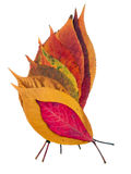 Fall Leaves. Colorful fall leaves isolated on white stock photography