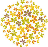 Fall leaves. Vector illustration pattern of fall  leaves Stock Images