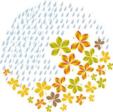 Fall leaves. Vector illustration pattern of fall  leaves Royalty Free Stock Photo