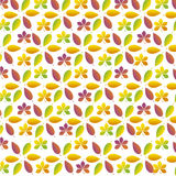 Fall leaves. Vector illustration pattern of fall  leaves Stock Photo