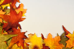 Free Fall Leaves Royalty Free Stock Image - 36852796