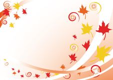 Fall of the leaves. Vector illustration fall of the leaves Stock Photography