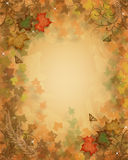 Fall Leaves Autumn background Stock Photos