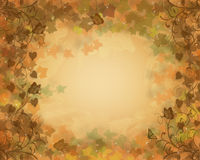 Fall Leaves Autumn background stock photo