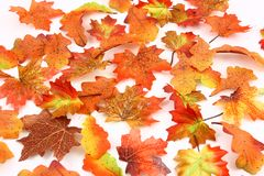 Fall Leaves Background. A colorful collection of silk leaves in shades of orange, brown, and yellow on a white background Stock Photography