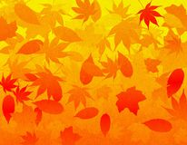 Fall Leaves Background. A falling leaves illustrated background using fall colors with a slight organic texture overlay vector illustration