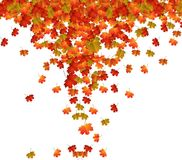 Fall Leaves Background. Vector Illustration of an Autumn Design Royalty Free Stock Photography