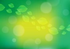 Fall Leaves Background. Green and Yellow fall leaves background Royalty Free Stock Images
