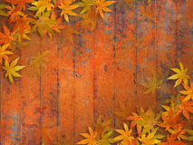 Fall leaves background. Grunge autumn design with fall leaves against orange red wooden planks Stock Photos