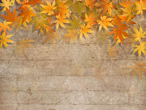 Fall leaves border - autumn design Stock Photo