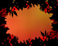 Fall leaves border Royalty Free Stock Photography