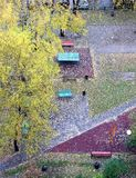 Fall of the leaves in the city park in autumn day. Lot of fallen leaves on the ground top view royalty free stock photography