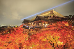 Fall Leaves at Clear Water Temple Stock Image