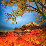 Fall Leaves at Clear Water Temple Royalty Free Stock Photography