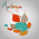 Fall leaves with color splash  warm fall Royalty Free Stock Images