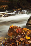 Fall leaves in the creek. Picture of river flow with rocky boulders and fall leaves Royalty Free Stock Photos