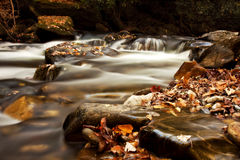 Fall leaves in the creek. Picture of river flow with rocky boulders and fall leaves Royalty Free Stock Image
