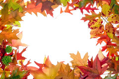 Fall leaves frame 2 Royalty Free Stock Image