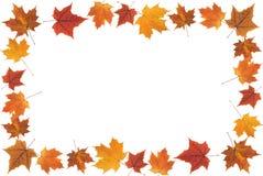 Fall leaves frame Stock Photo