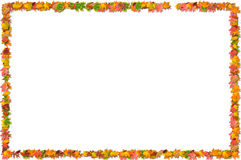Fall leaves frame. Fall colored leaves frame stock illustration