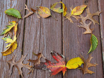 Fall leaves frame on deck Royalty Free Stock Photography