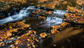 Fall leaves in a gorge near Ithaca, NY. Water blurred by a long exposure cascades over little bedrock ledges covered in fall leaves Stock Photos