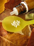 Fall leaves and homeopathic pills Stock Photography