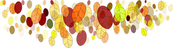 Fall leaves-illustration Royalty Free Stock Photo
