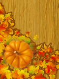Fall leaves with orange gourd Royalty Free Stock Image