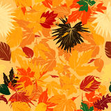 Fall leaves pattern. Seamless background with fall leaves Stock Photo