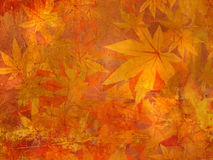 Fall leaves pattern Royalty Free Stock Photos