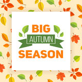 Fall leaves pattern and text. Stock Photos