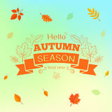 Fall leaves pattern and text. Stock Photography