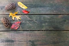 Fall leaves and pine cones decorating a wood deck - great autumn background. stock images
