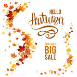 Fall leaves poster. Autumn leaves design elements. Maple fall leaves on poster Royalty Free Stock Photo