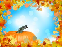 Fall leaves with pumpkin and sky background. EPS 8 Stock Photography