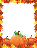 Fall Leaves and pumpkins border Stock Image