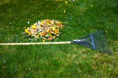 Fall leaves with rake Royalty Free Stock Image
