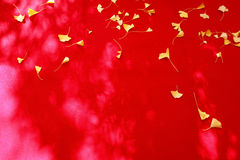 Fall leaves on red fabric. Background of autumn leaves on red fabric Stock Photography