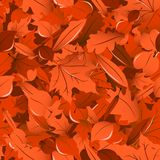 Fall leaves seamless pattern Royalty Free Stock Image