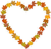 Fall leaves shaped heart frame Stock Photography