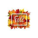 Fall leaves sign. Autumn leaf frame. Nature symbol with Fall let Stock Photo