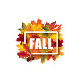Fall leaves sign. Autumn leaf frame. Nature symbol Royalty Free Stock Image